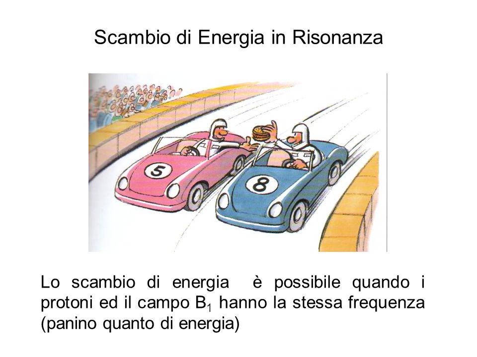 Scambio di Energia in Risonanza Lo scambio di energia è possibile quando i protoni ed il campo B 1 hanno la stessa frequenza (panino quanto di energia