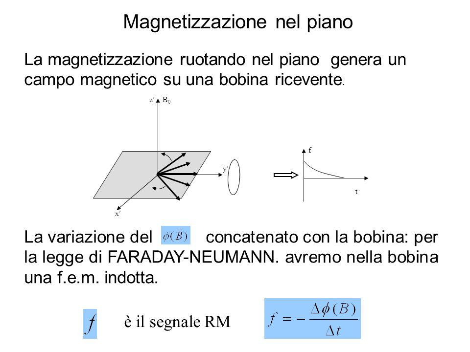 è il segnale RM La variazione del concatenato con la bobina: per la legge di FARADAY-NEUMANN. avremo nella bobina una f.e.m. indotta. La magnetizzazio