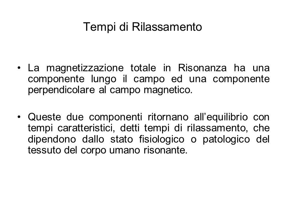 Tempi di Rilassamento La magnetizzazione totale in Risonanza ha una componente lungo il campo ed una componente perpendicolare al campo magnetico. Que