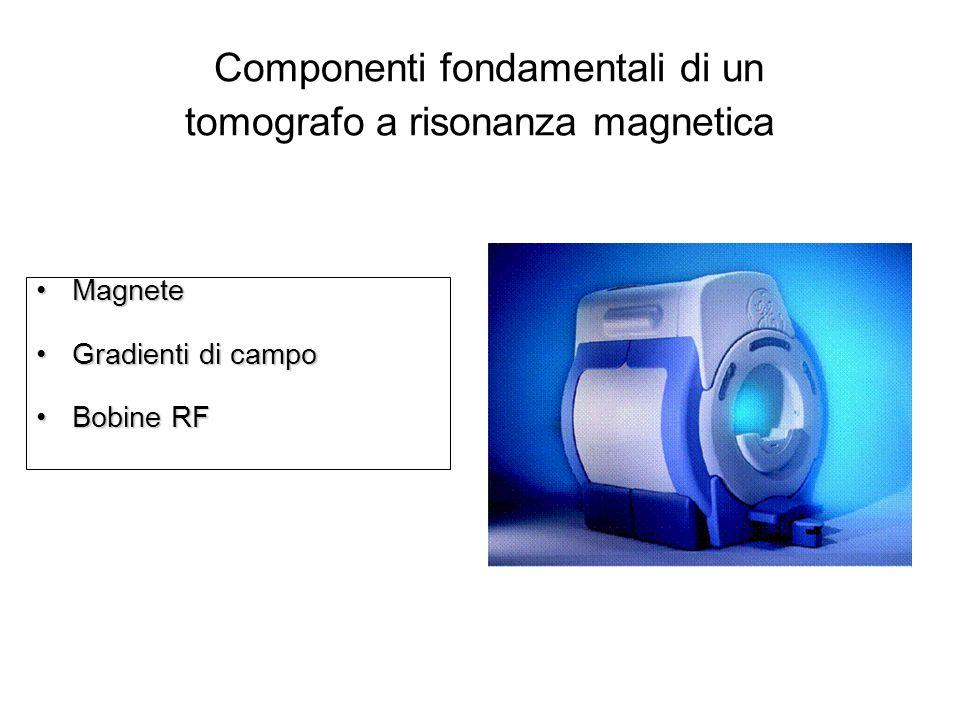 Componenti fondamentali di un tomografo a risonanza magnetica MagneteMagnete Gradienti di campoGradienti di campo Bobine RFBobine RF