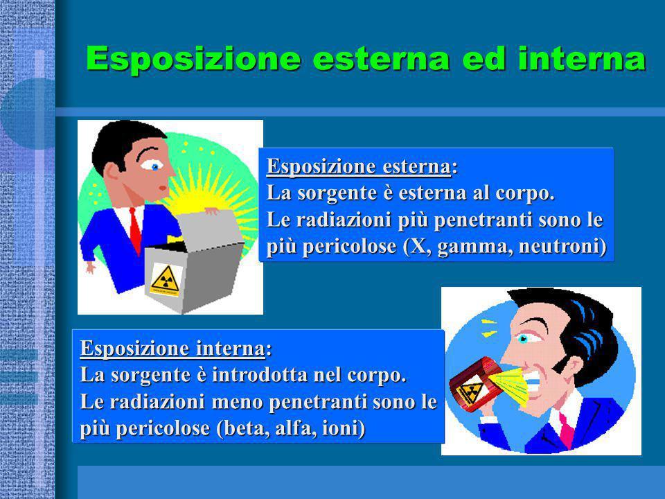 Esposizione esterna ed interna Esposizione esterna: La sorgente è esterna al corpo. Le radiazioni più penetranti sono le più pericolose (X, gamma, neu