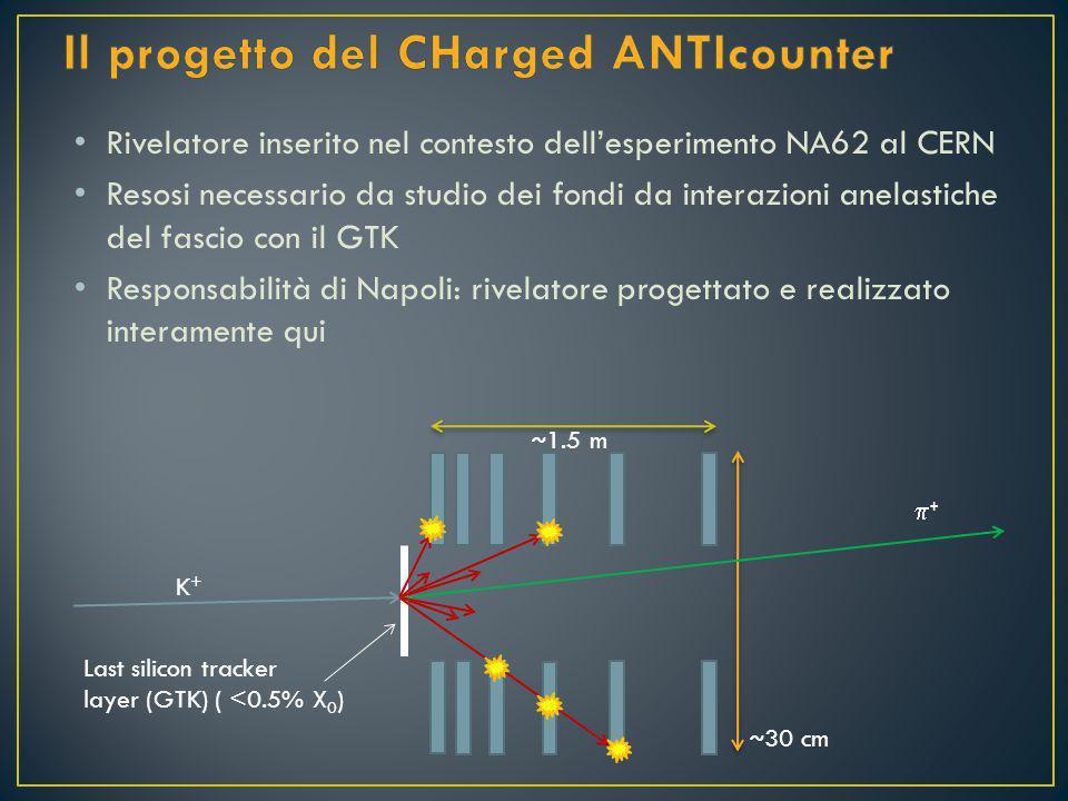 Rivelatore inserito nel contesto dell'esperimento NA62 al CERN Resosi necessario da studio dei fondi da interazioni anelastiche del fascio con il GTK Responsabilità di Napoli: rivelatore progettato e realizzato interamente qui K+K+ ++ Last silicon tracker layer (GTK) ( <0.5% X 0 ) ~ 30 cm ~ 1.5 m