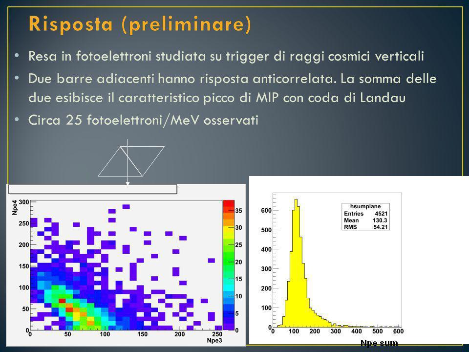 Resa in fotoelettroni studiata su trigger di raggi cosmici verticali Due barre adiacenti hanno risposta anticorrelata.