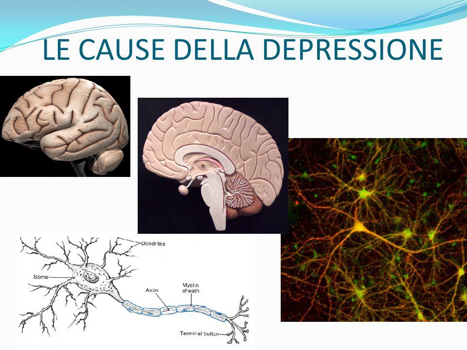 COSA ACCADE? La depressione è associata ad uno squilibrio biochimico a livello del nostro cervello. Tale squilibrio è la causa di alterazioni a livell
