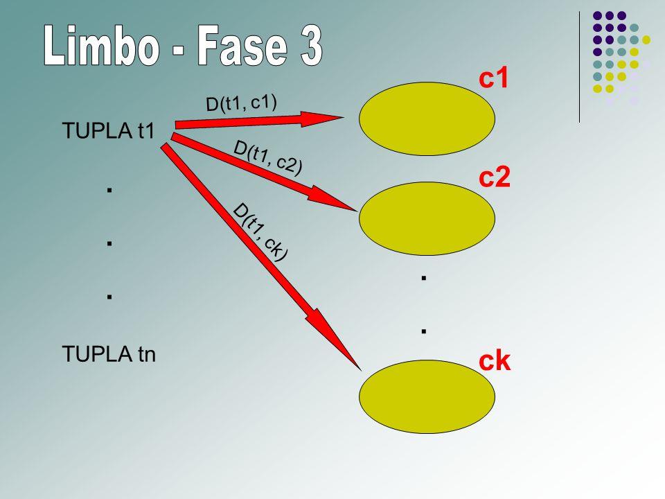 TUPLA t1 TUPLA tn.......... c1 c2 ck D(t1, c1) D(t1, c2) D(t1, ck)