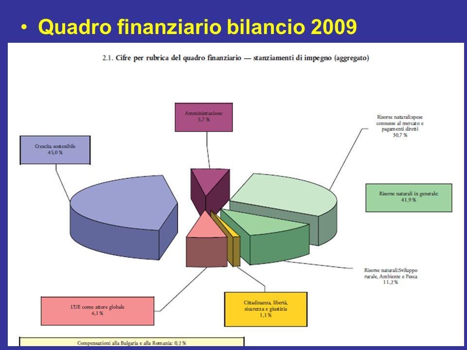 Quadro finanziario bilancio 2009