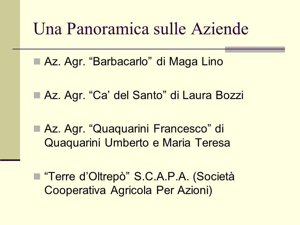 "Una Panoramica sulle Aziende Az. Agr. ""Barbacarlo"" di Maga Lino Az. Agr. ""Ca' del Santo"" di Laura Bozzi Az. Agr. ""Quaquarini Francesco"" di Quaquarini"