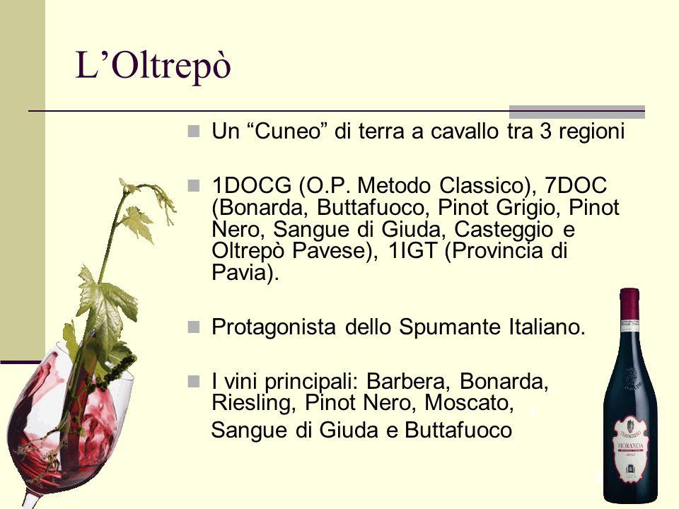 """L'Oltrepò Un """"Cuneo"""" di terra a cavallo tra 3 regioni 1DOCG (O.P. Metodo Classico), 7DOC (Bonarda, Buttafuoco, Pinot Grigio, Pinot Nero, Sangue di Giu"""