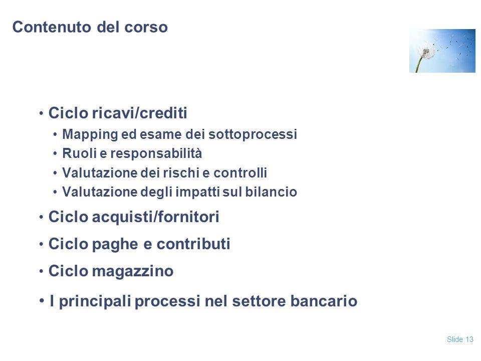 Slide 13 Contenuto del corso Ciclo ricavi/crediti Mapping ed esame dei sottoprocessi Ruoli e responsabilità Valutazione dei rischi e controlli Valutaz