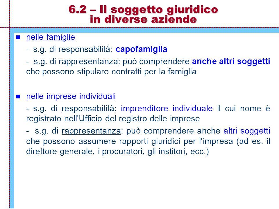 6.2 – Il soggetto giuridico in diverse aziende nelle famiglie - s.g. di responsabilità: capofamiglia - s.g. di rappresentanza: può comprendere anche a