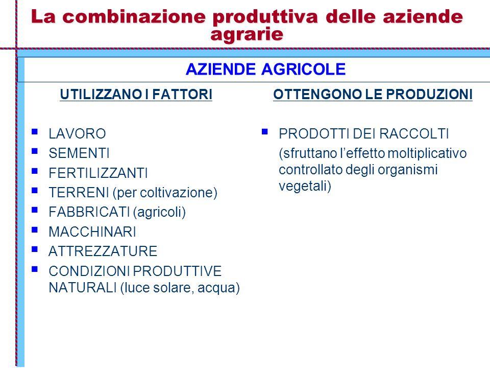 La combinazione produttiva delle aziende agrarie UTILIZZANO I FATTORI  LAVORO  SEMENTI  FERTILIZZANTI  TERRENI (per coltivazione)  FABBRICATI (ag