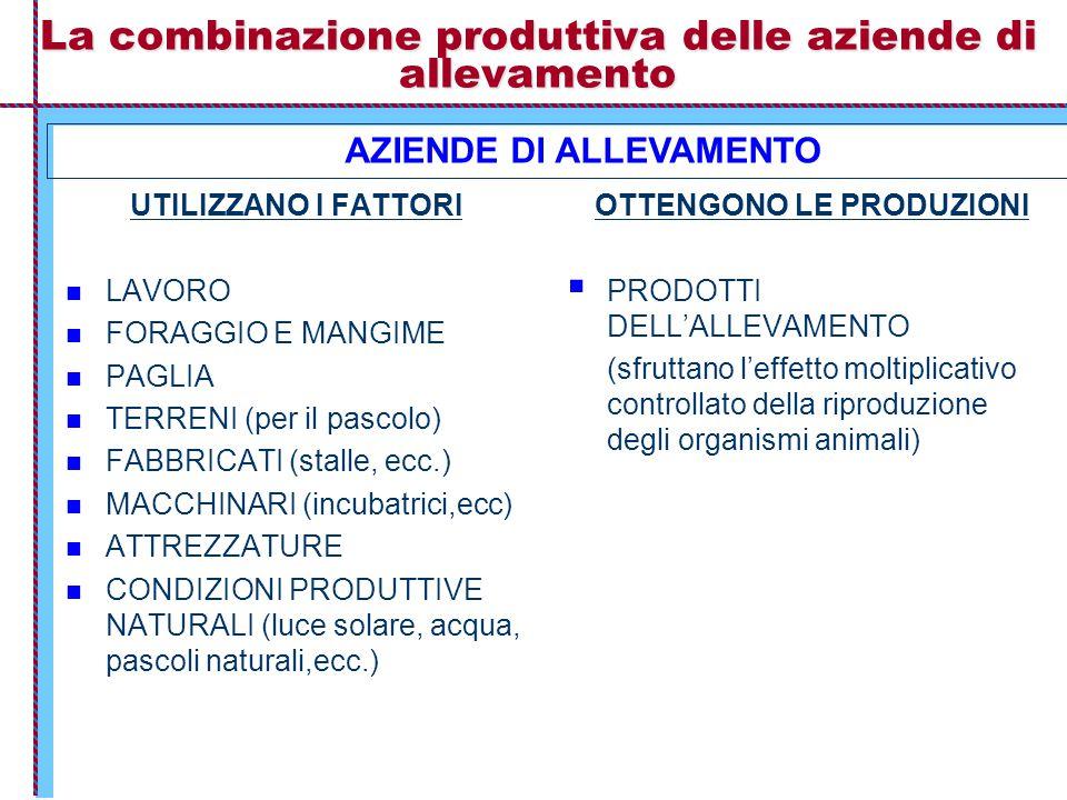 La combinazione produttiva delle aziende di allevamento UTILIZZANO I FATTORI LAVORO FORAGGIO E MANGIME PAGLIA TERRENI (per il pascolo) FABBRICATI (stalle, ecc.) MACCHINARI (incubatrici,ecc) ATTREZZATURE CONDIZIONI PRODUTTIVE NATURALI (luce solare, acqua, pascoli naturali,ecc.) OTTENGONO LE PRODUZIONI  PRODOTTI DELL'ALLEVAMENTO (sfruttano l'effetto moltiplicativo controllato della riproduzione degli organismi animali) AZIENDE DI ALLEVAMENTO