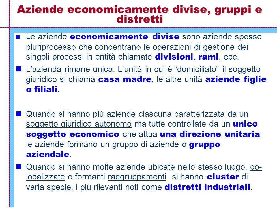 Aziende economicamente divise, gruppi e distretti Le aziende economicamente divise sono aziende spesso pluriprocesso che concentrano le operazioni di