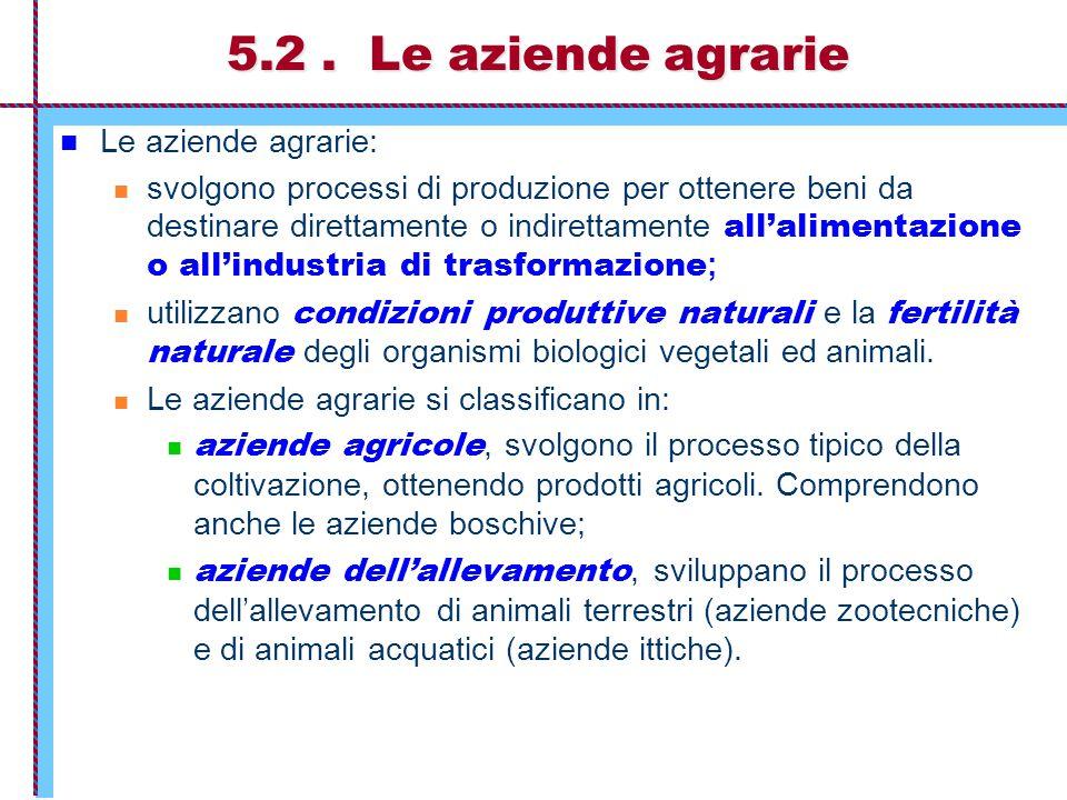 La combinazione produttiva delle aziende agrarie UTILIZZANO I FATTORI  LAVORO  SEMENTI  FERTILIZZANTI  TERRENI (per coltivazione)  FABBRICATI (agricoli)  MACCHINARI  ATTREZZATURE  CONDIZIONI PRODUTTIVE NATURALI (luce solare, acqua) OTTENGONO LE PRODUZIONI  PRODOTTI DEI RACCOLTI (sfruttano l'effetto moltiplicativo controllato degli organismi vegetali) AZIENDE AGRICOLE