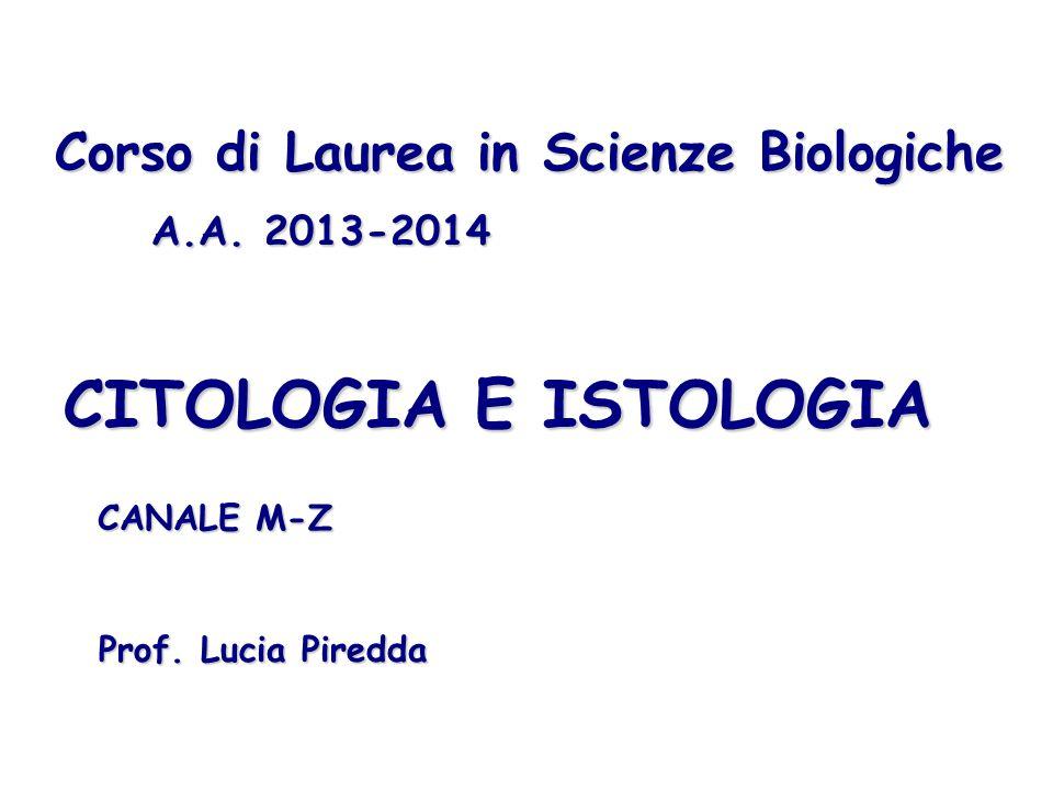 CITOLOGIA E ISTOLOGIA Corso di Laurea in Scienze Biologiche A.A. 2013-2014 Prof. Lucia Piredda CANALE M-Z