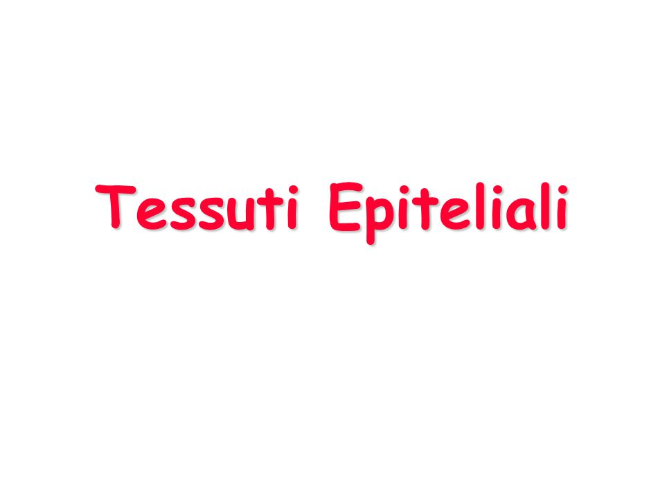 Epiteli I tessuti epiteliali originano da ciascuno dei 3 foglietti embrionali.I tessuti epiteliali originano da ciascuno dei 3 foglietti embrionali.