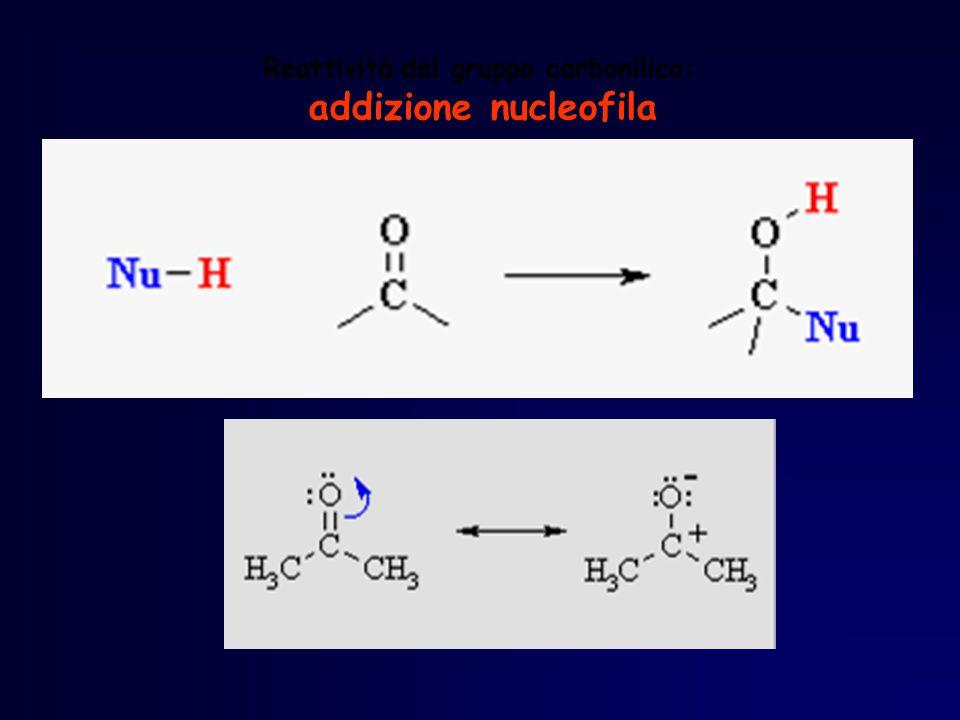 Reattività del gruppo carbonilico: addizione nucleofila