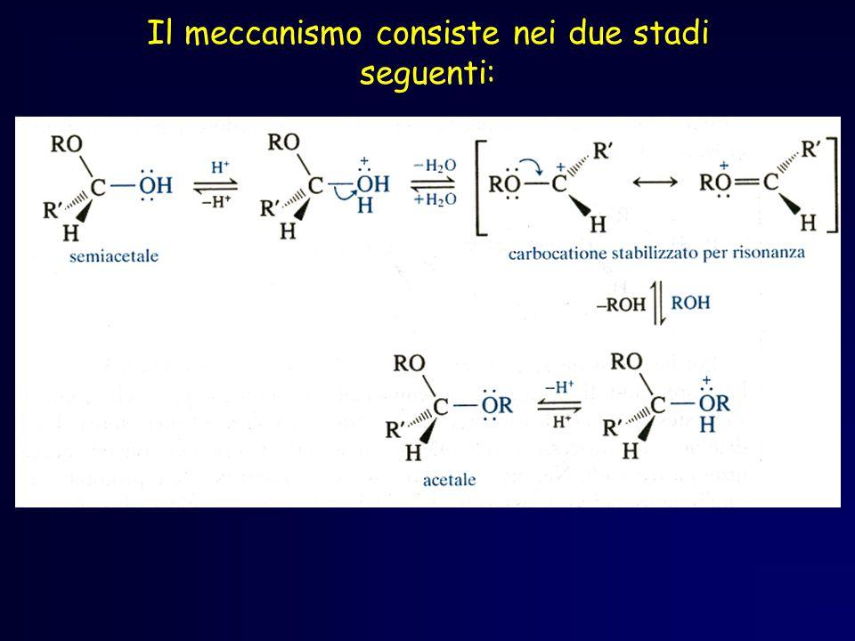Acetali Questo meccanismo avviene in due stadi: Ogni passaggio è reversibile.