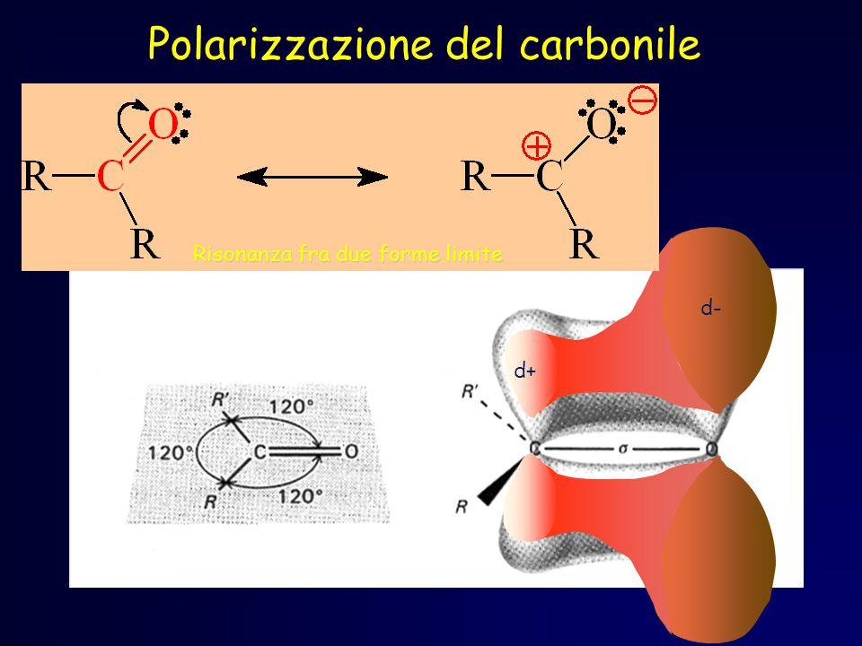 Polarizzazione del carbonile d+ d- Risonanza fra due forme limite