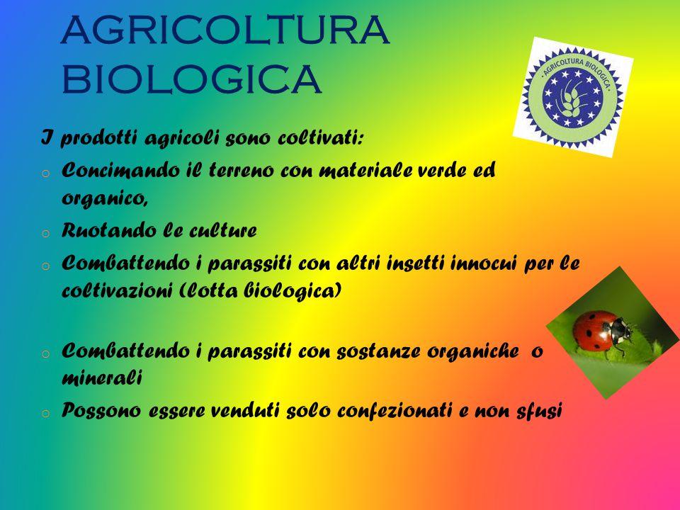 AGRICOLTURA BIOLOGICA I prodotti agricoli sono coltivati: o Concimando il terreno con materiale verde ed organico, o Ruotando le culture o Combattendo i parassiti con altri insetti innocui per le coltivazioni (lotta biologica) o Combattendo i parassiti con sostanze organiche o minerali o Possono essere venduti solo confezionati e non sfusi