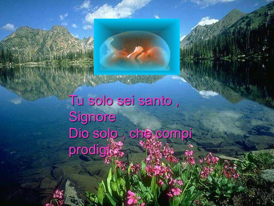 Tu solo sei santo, Signore Dio solo, che compi prodigi.