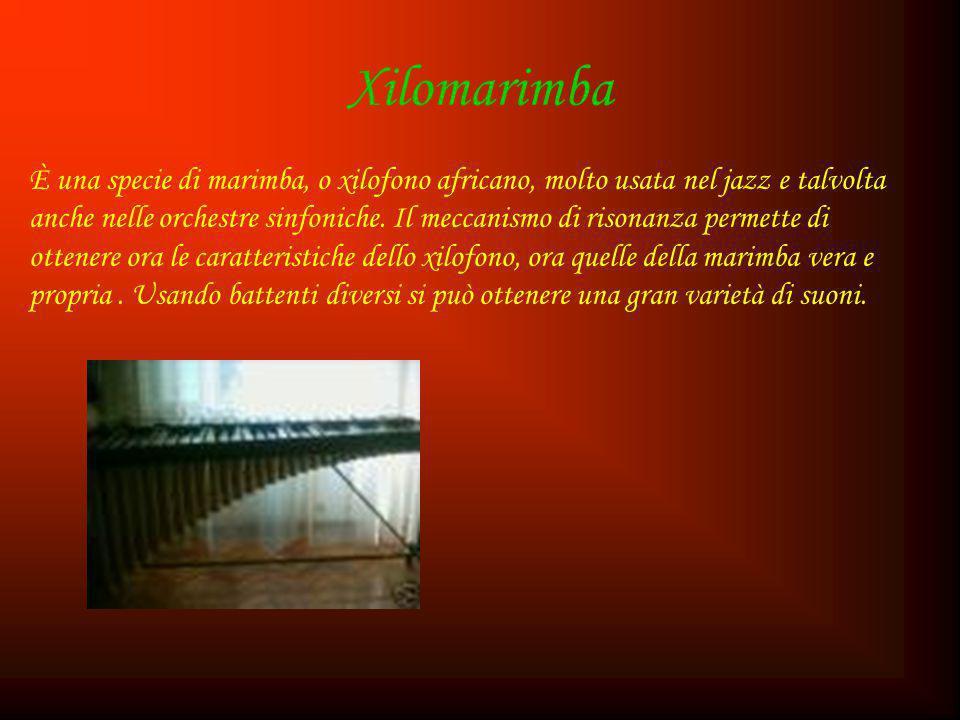 Xilomarimba È una specie di marimba, o xilofono africano, molto usata nel jazz e talvolta anche nelle orchestre sinfoniche. Il meccanismo di risonanza