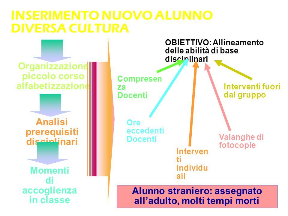 INSERIMENTO NUOVO ALUNNO DIVERSA CULTURA Organizzazione piccolo corso alfabetizzazione Analisi prerequisiti disciplinari Momenti di accoglienza in cla