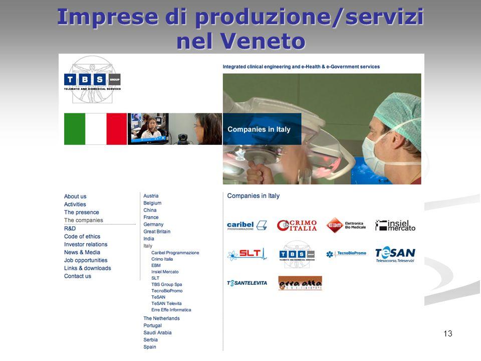 13 Imprese di produzione/servizi nel Veneto