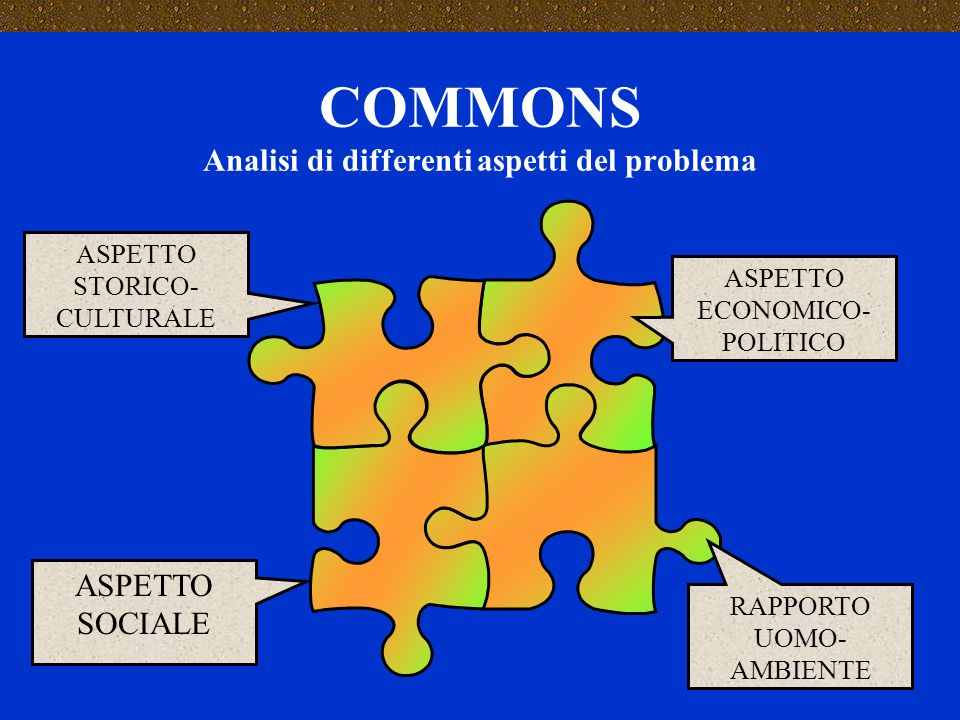 COMMONS Analisi di differenti aspetti del problema ASPETTO ECONOMICO- POLITICO RAPPORTO UOMO- AMBIENTE ASPETTO STORICO- CULTURALE ASPETTO SOCIALE