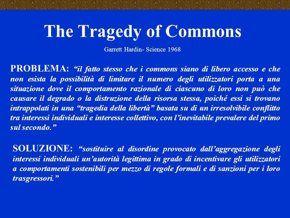 GESTIONE DEI COMMONS DISEQUITA' NELL'ACCESSO AI COMMONS CONFLITTO AUTORITA' DI CONTROLLO E GESTIONE ISTITUZIONI ENDOGENE E FORME DI COOPERAZIONE VIOLENZA < RESPONSABILITA' E CONSAPEVOLEZZA DEL SINGOLO > RESPONSABILITA' E CONSAPEVOLEZZA DEL SINGOLO