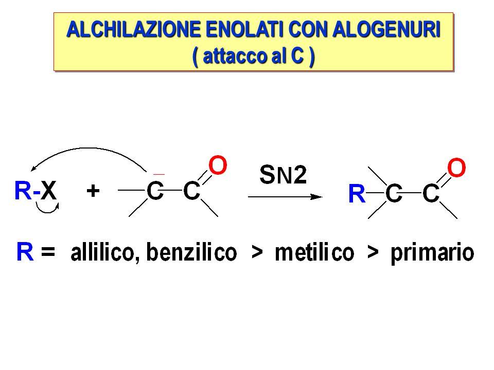 ALCHILAZIONE ENOLATI CON ALOGENURI ( attacco al C ) ALCHILAZIONE ENOLATI CON ALOGENURI ( attacco al C )