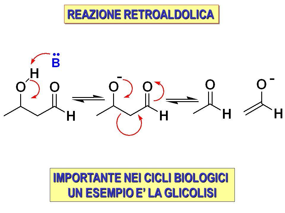 REAZIONE RETROALDOLICA IMPORTANTE NEI CICLI BIOLOGICI UN ESEMPIO E' LA GLICOLISI