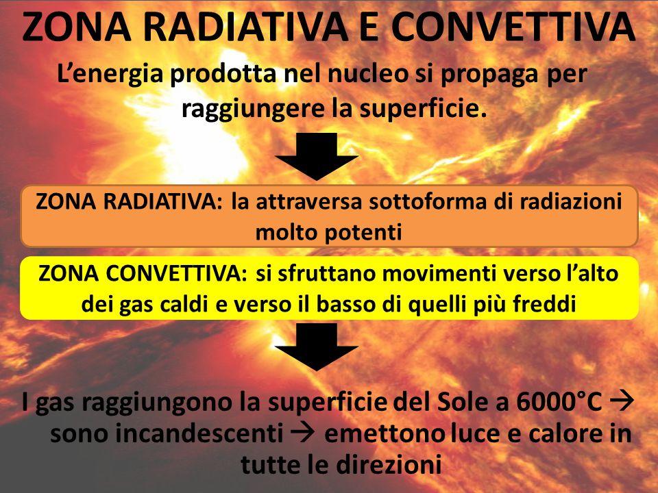L'energia prodotta nel nucleo si propaga per raggiungere la superficie. ZONA RADIATIVA E CONVETTIVA ZONA RADIATIVA: la attraversa sottoforma di radiaz