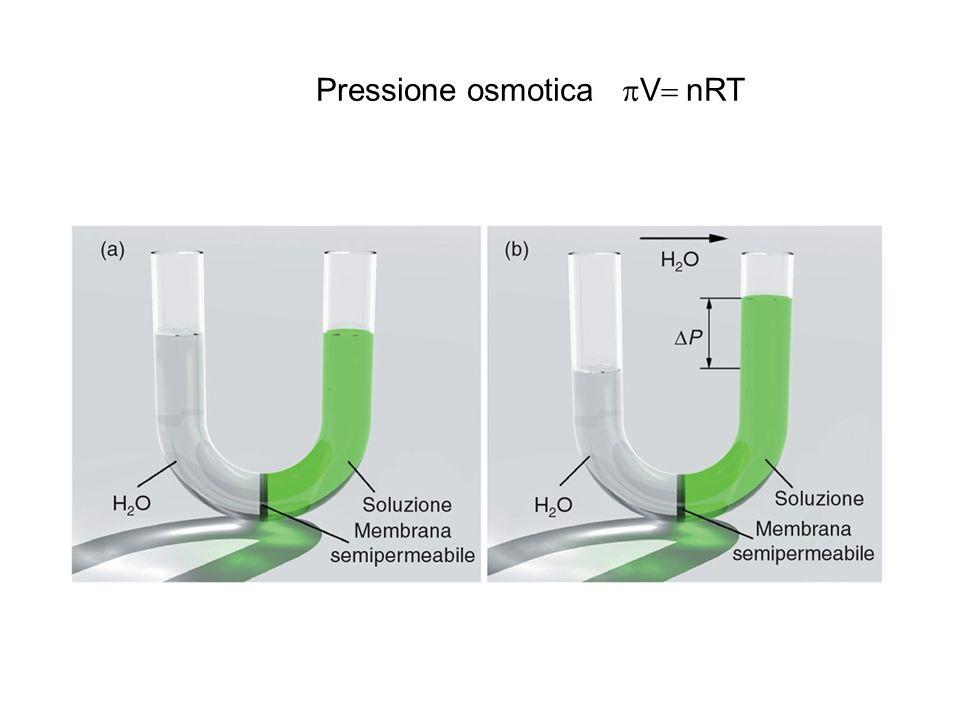 Pressione osmotica  V  nRT