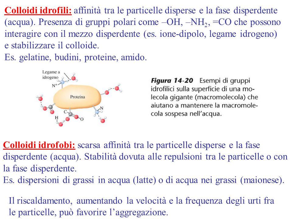 Colloidi idrofili: affinità tra le particelle disperse e la fase disperdente (acqua). Presenza di gruppi polari come –OH, –NH 2, =CO che possono inter