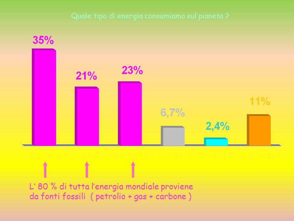 L' 80 % di tutta l'energia mondiale proviene da fonti fossili ( petrolio + gas + carbone ) Quale tipo di energia consumiamo sul pianeta ?