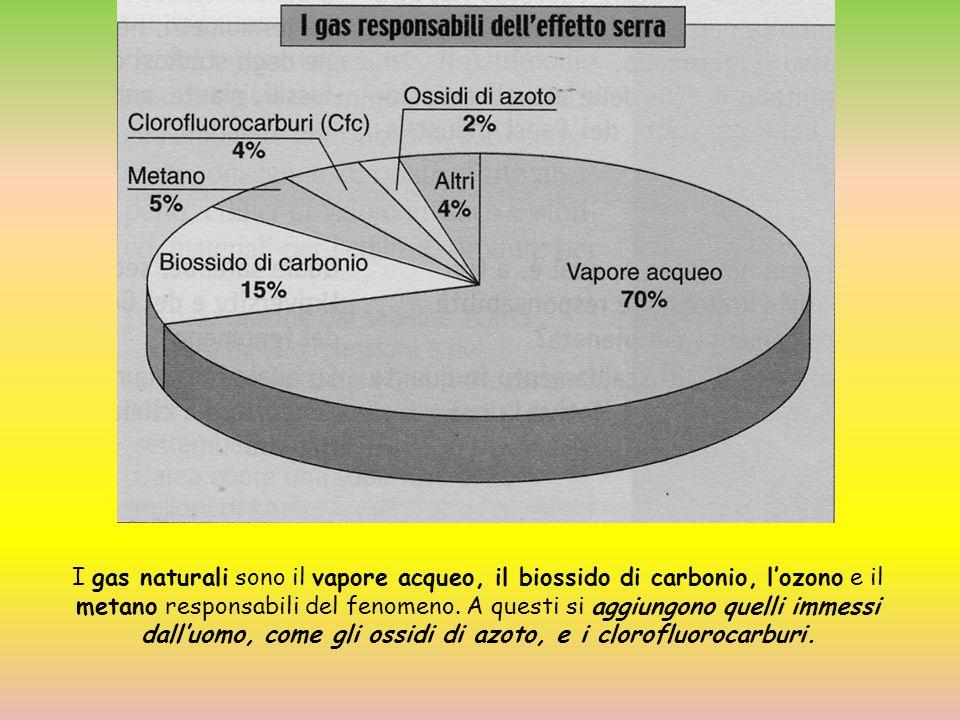 I gas naturali sono il vapore acqueo, il biossido di carbonio, l'ozono e il metano responsabili del fenomeno. A questi si aggiungono quelli immessi da