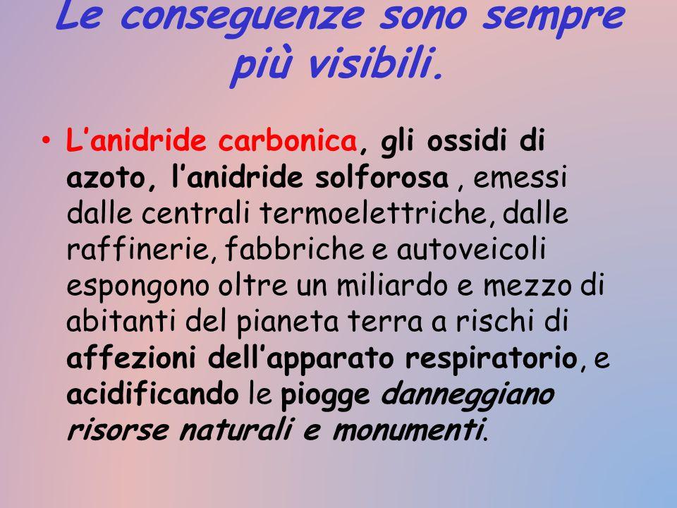 Le conseguenze sono sempre più visibili. L'anidride carbonica, gli ossidi di azoto, l'anidride solforosa, emessi dalle centrali termoelettriche, dalle