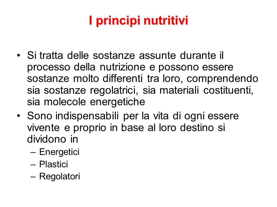 I principi nutritivi Si tratta delle sostanze assunte durante il processo della nutrizione e possono essere sostanze molto differenti tra loro, compre