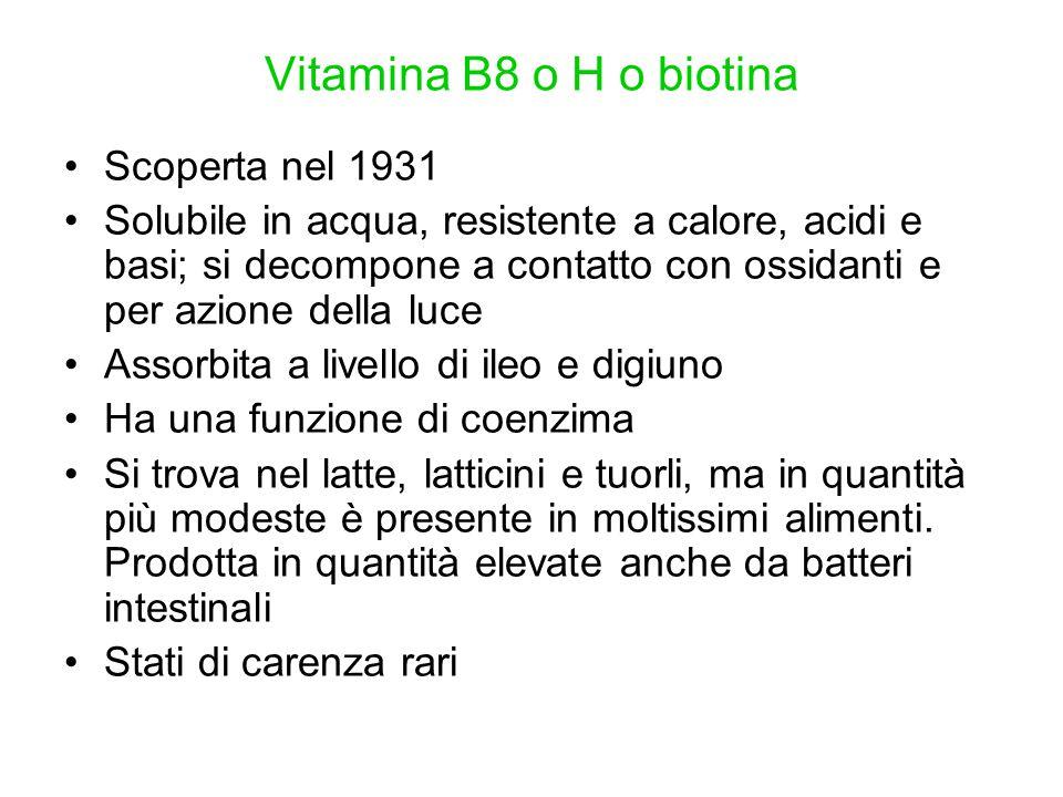 Vitamina B8 o H o biotina Scoperta nel 1931 Solubile in acqua, resistente a calore, acidi e basi; si decompone a contatto con ossidanti e per azione d