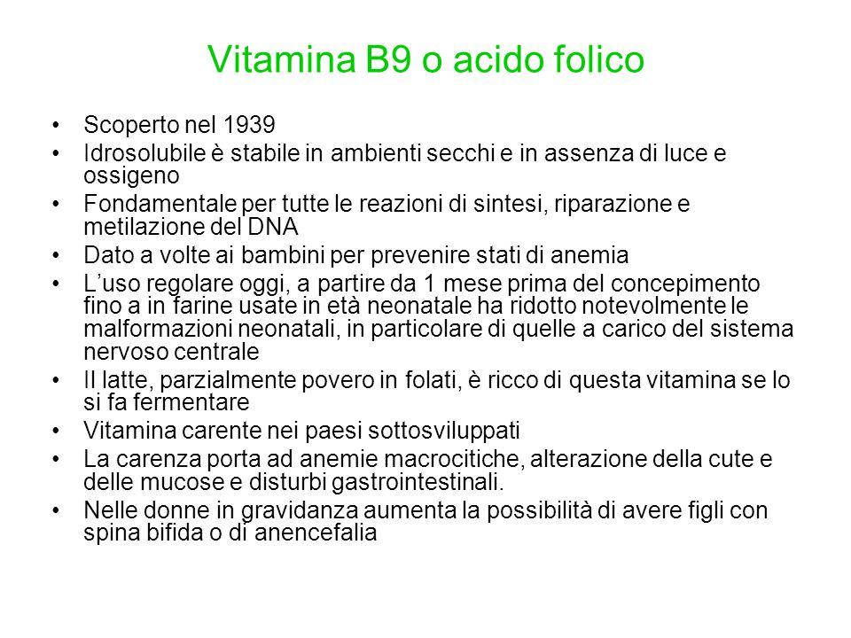 Vitamina B9 o acido folico Scoperto nel 1939 Idrosolubile è stabile in ambienti secchi e in assenza di luce e ossigeno Fondamentale per tutte le reazi
