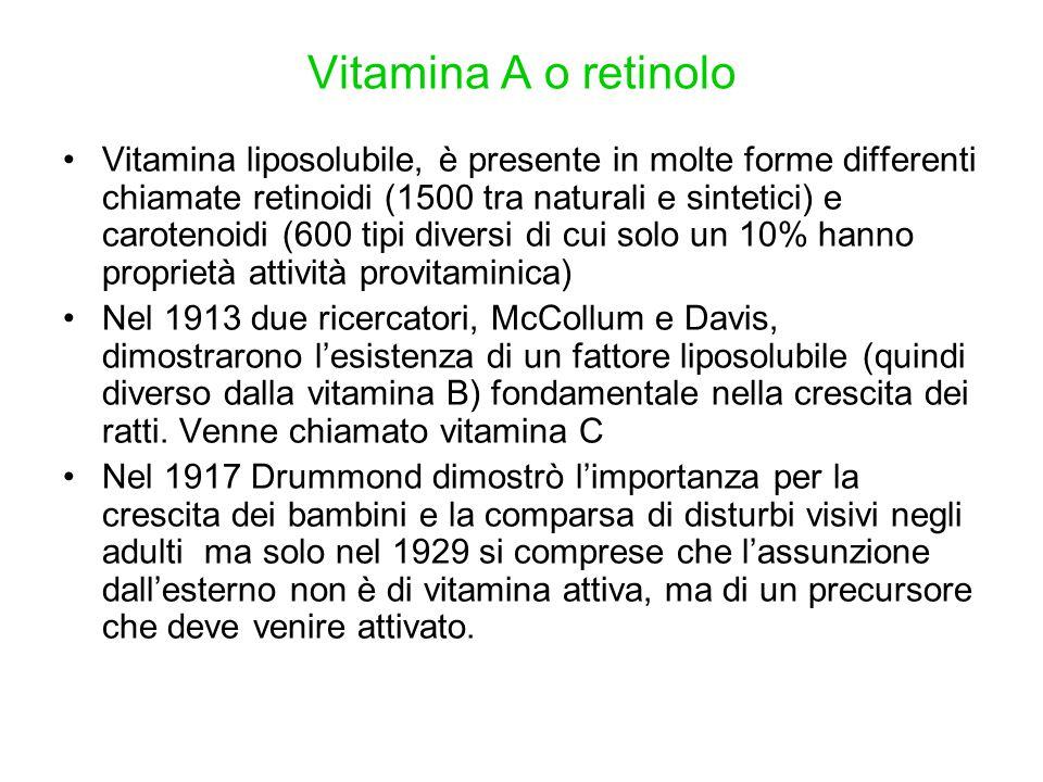 Vitamina A o retinolo Vitamina liposolubile, è presente in molte forme differenti chiamate retinoidi (1500 tra naturali e sintetici) e carotenoidi (60
