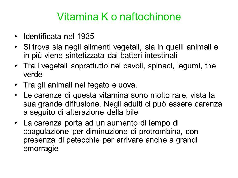 Vitamina K o naftochinone Identificata nel 1935 Si trova sia negli alimenti vegetali, sia in quelli animali e in più viene sintetizzata dai batteri in