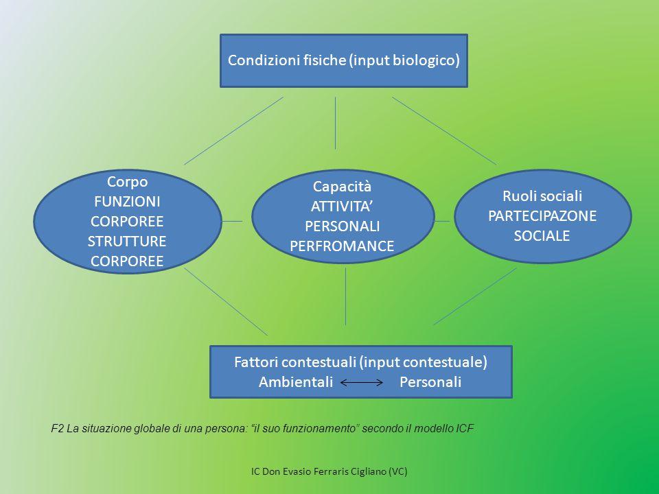 Condizioni fisiche (input biologico) Corpo FUNZIONI CORPOREE STRUTTURE CORPOREE Capacità ATTIVITA' PERSONALI PERFROMANCE Ruoli sociali PARTECIPAZONE S