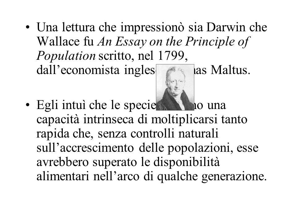 Una lettura che impressionò sia Darwin che Wallace fu An Essay on the Principle of Population scritto, nel 1799, dall'economista inglese Thomas Maltus.