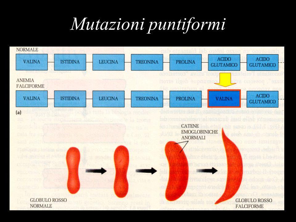 Mutazioni puntiformi
