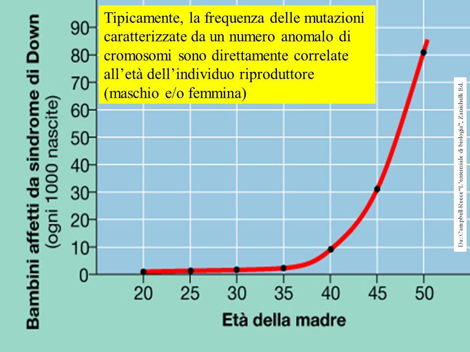 Tipicamente, la frequenza delle mutazioni caratterizzate da un numero anomalo di cromosomi sono direttamente correlate all'età dell'individuo riproduttore (maschio e/o femmina) Da: Campbell-Reece L'essenziale di biologia , Zanichelli Ed.
