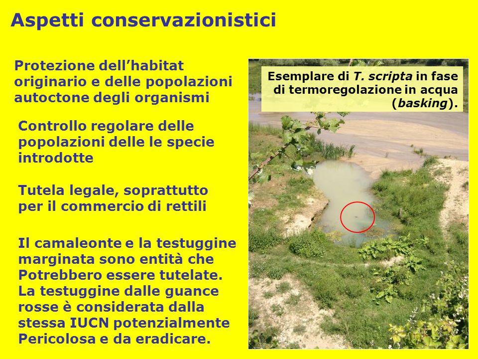Protezione dell'habitat originario e delle popolazioni autoctone degli organismi Controllo regolare delle popolazioni delle le specie introdotte Tutel