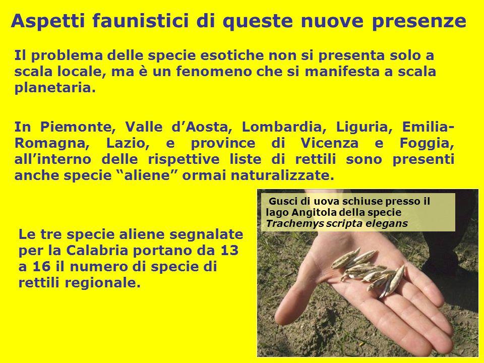 Protezione dell'habitat originario e delle popolazioni autoctone degli organismi Controllo regolare delle popolazioni delle le specie introdotte Tutela legale, soprattutto per il commercio di rettili Esemplare di T.
