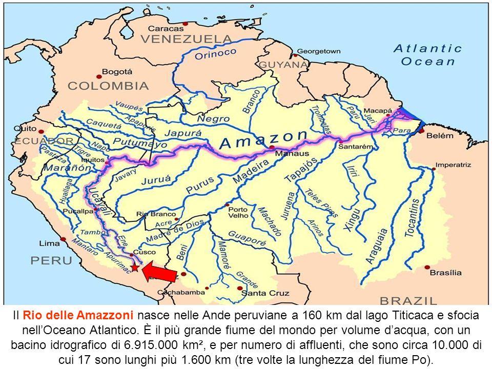 Origine del nome Amazzonia. Lo spagnolo Francisco de Orellana nel XVI secolo percorrendo il fiume Marañón s'imbattè in una tribù di donne guerriere e